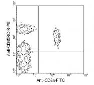 AM08046RP-N - CD45 / LCA