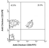 AM08114RP-N - CD3