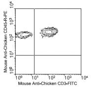 AM08122RP-N - CD45 / LCA