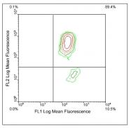 AM08132FC-N - Beta-2-microglobulin