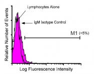 AM08215FC-N - Rat IgM Isotype Control