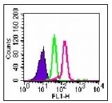 AM08394PU-N - CD289 / TLR9