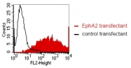 DM1226 - EPHA2 / ECK