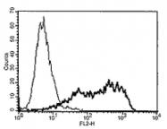 AM20114PU-N - TNFRSF21 / Death receptor 6 (DR6)