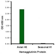 AM20122PU-N - Influenza A H5N1