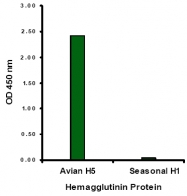 AM20123PU-N - Influenza A H5N1