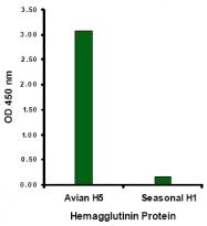 AM20133PU-N - Influenza A H5N1