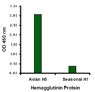 AP30105PU-N - Influenza A H5N1