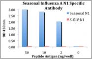 AP30773PU-N - Seasonal H1N1 Neuraminidase