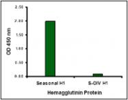 AP30771PU-N - Seasonal H1N1 Hemagglutinin