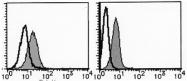 AM20194FC-N - ABCB2 / APT1 / TAP1