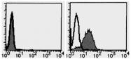 AM20200AF-N - CD109 / CPAMD7