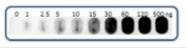 AP09881PU-N - Adrenocorticotropic Hormone (ACTH)