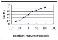 AM20463PU-N - Apolipoprotein A II / Apo AII