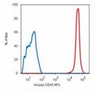 AM26024PU-N - CD45 / LCA