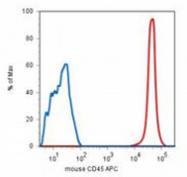 AM26024RP-N - CD45 / LCA