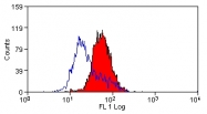AM20860FC-N - CD178 / Fas Ligand