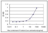 AM20955PU-N - Vitamin D3 receptor / NR1I1