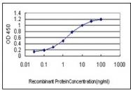 AM20873PU-N - Mu-crystallin homolog