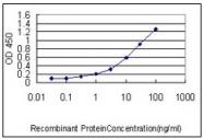 AM20876PU-N - Protein CASP