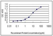 AM20893PU-N - Hemoglobin beta chain