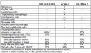 BM4007F - Macrophage F4/80 antigen