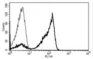 AM31181AF-N - CD2