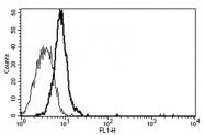 AM31174AF-N - CD130 / IL6ST