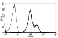 AM31182PU-N - CD11a / ITGAL