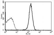 AM31184FC-N - CD31 / PECAM1