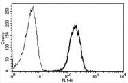 AM31186AF-N - CD50 / ICAM3