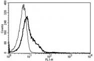 AM31187AF-N - CD54 / ICAM1