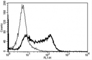 AM31191AF-N - CD62L / L-Selectin