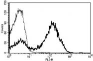 AM31217RP-N - CD5