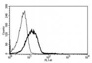 AM31349FC-N - CD102 / ICAM2