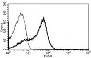 AM31219RP-N - CD7