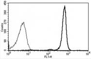 AM31224AF-N - CD45 / LCA