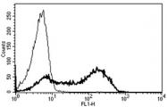 AM31226PU-N - CD45 / LCA