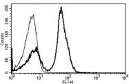 AM31233AF-N - CD28