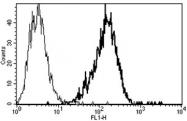 AM31240AF-N - CD75 / ST6GAL1