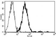 AM31243AF-N - CD151 / TSPAN24