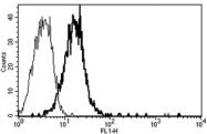 AM31244AF-N - CD109 / CPAMD7