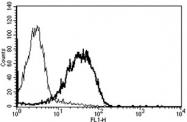 AM31245PU-N - CD99 / MIC2