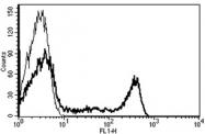 AM31251FC-N - CD8