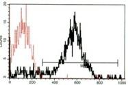 AM31273PU-N - CD62P / P-Selectin