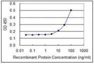 AM31765PU-N - Protein phosphatase 1A / PPM1A