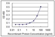 AM31769PU-N - TER ATPase / VCP