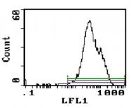 CL005P - CD5