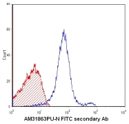 AM31863PU-N - TCR DO-11.10