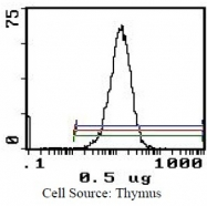 CL029R - CD45 / LCA